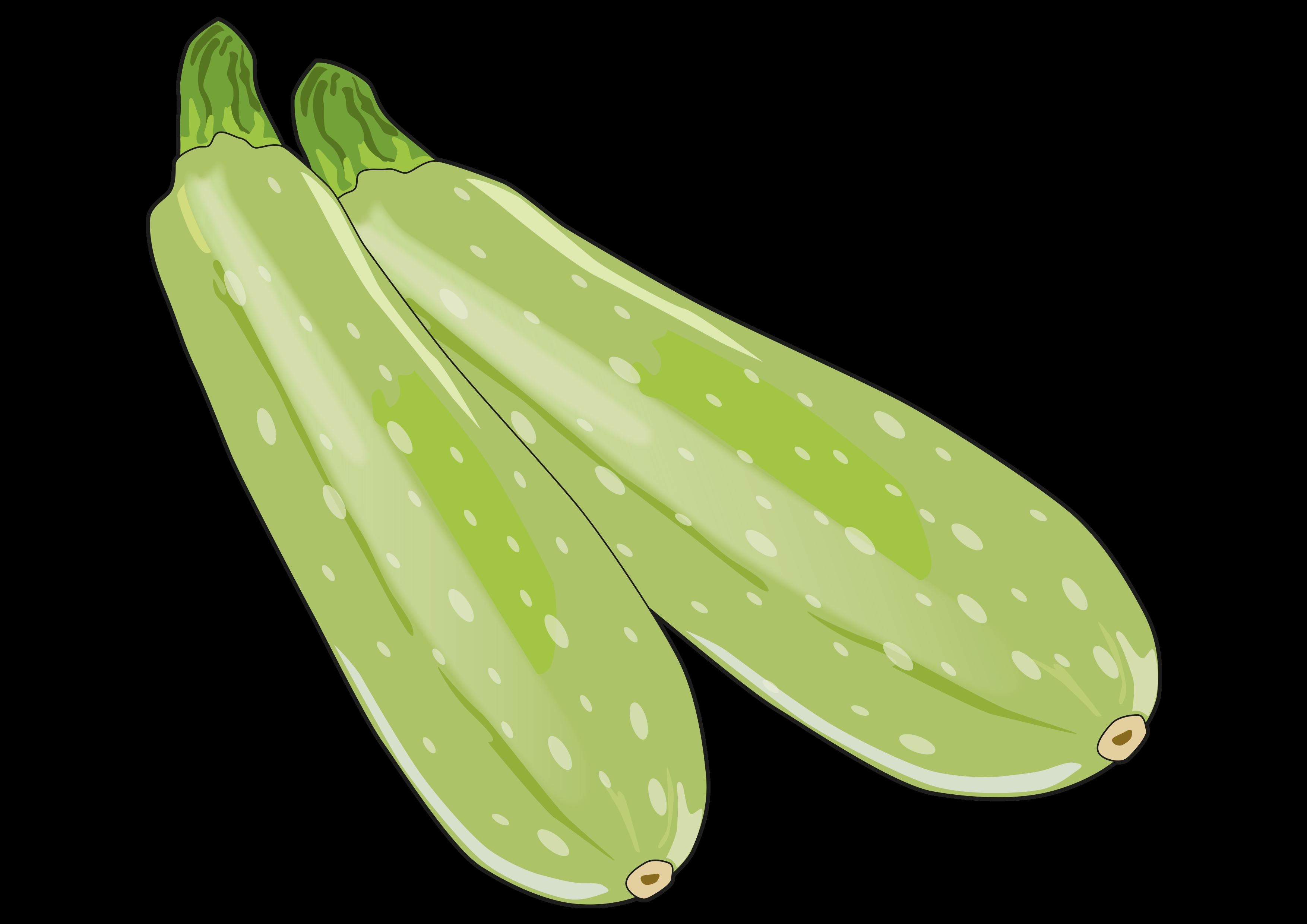 Calabacín